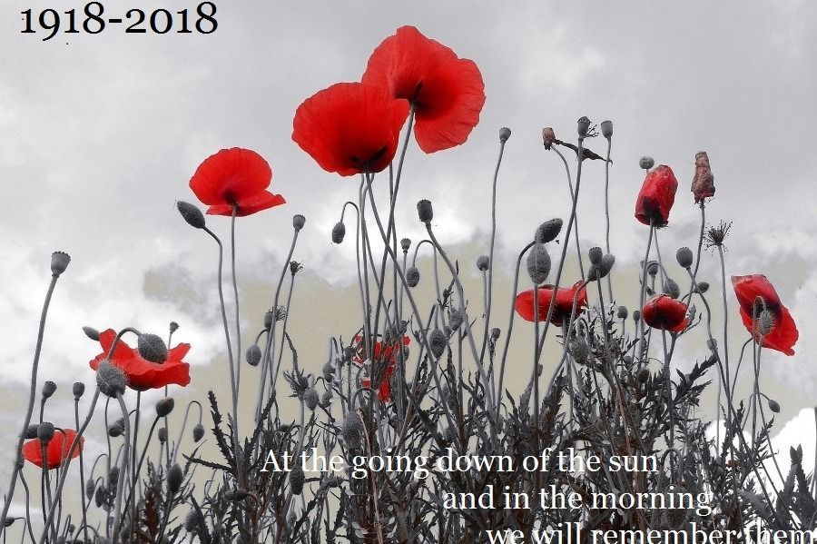 1918-2018 At the going down of the sun and in the morning we will remember them